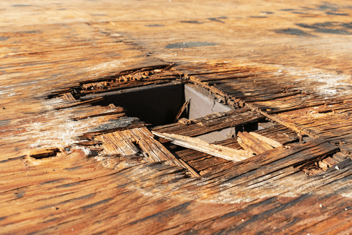 an example image showing what happen to plywood when it gets wet and rots